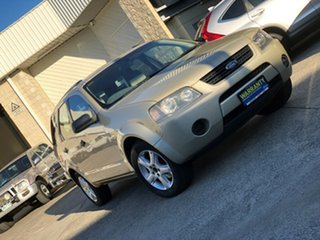 2005 Ford Territory SX TS AWD Gold 4 Speed Sports Automatic Wagon