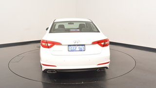 2017 Hyundai Sonata LF3 MY17 Active White Cream 6 Speed Sports Automatic Sedan