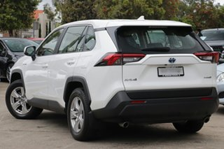 2019 Toyota RAV4 Axah54R GX eFour Glacier White 6 Speed Constant Variable Wagon.