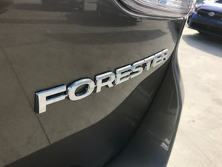 Forester MY21 2.5i-P Ptrl