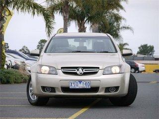 2007 Holden Berlina VE Gold 4 Speed Automatic Sedan.