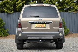 2006 Ford Escape ZC XLT Sport Gold 4 Speed Automatic SUV