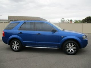 2007 Ford Territory SY SR Blue 4 Speed Sports Automatic Wagon
