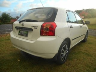 2006 Toyota Corolla ZZE122R Ascent Seca 4 Speed Automatic Hatchback