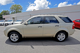 2008 Ford Territory SY Ghia Kashmir 4 Speed Sports Automatic Wagon