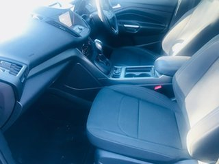 2019 Ford Escape ZG 2019.25MY Trend Black 6 Speed Sports Automatic SUV