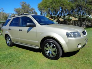 2007 Ford Territory SY SR Gold 4 Speed Sports Automatic Wagon