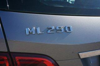 2012 Mercedes-Benz M-Class W166 ML250 BlueTEC 7G-Tronic + Grey 7 Speed Sports Automatic Wagon
