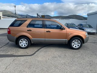 2005 Ford Territory SY TX Gold 4 Speed Sports Automatic Wagon.