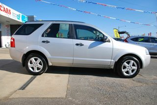 2005 Ford Territory SX TS (RWD) Silver 4 Speed Auto Seq Sportshift Wagon