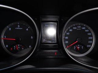 2013 Hyundai Santa Fe DM MY14 Active Silver 6 Speed Sports Automatic Wagon