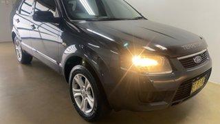 2010 Ford Territory SY MkII TX (RWD) Grey 4 Speed Auto Seq Sportshift Wagon.