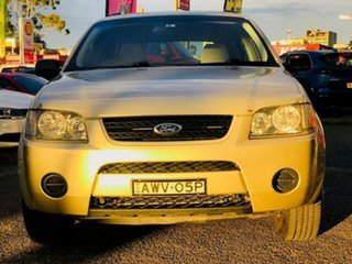 2005 Ford Territory SX TX Beige 4 Speed Sports Automatic Wagon