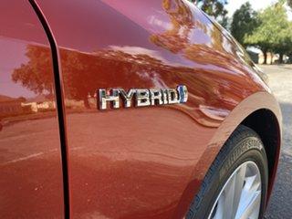 2019 Toyota Corolla ZWE211R SX E-CVT Hybrid Red 10 Speed Constant Variable Hatchback Hybrid