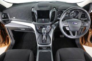 2017 Ford Escape ZG Trend (AWD) Bronze 6 Speed Automatic SUV